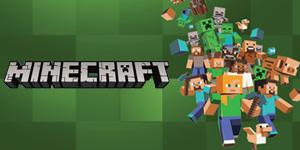 Pivot Point Minecraft Group Activity